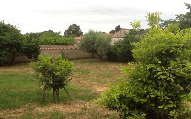 tragliatella95mq9.jpg